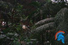 Invernadero Estación de Atocha