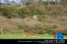 La cueva de El Pendo